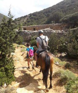 Horseback riding Sifnos