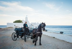 horse-dawn wedding carriage